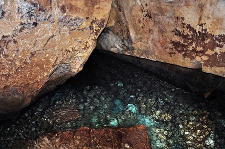 hanikra: Rosh HaNikra grottoes that located between Israel and Lebanon border in North Israel. Photos by Rafael Ben-AriChameleons Eye
