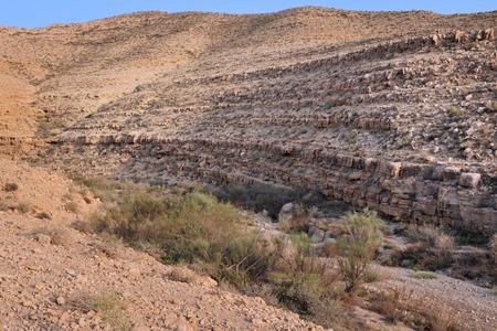 negev: Wild landscape in the Negev desert Israel Stock Photo