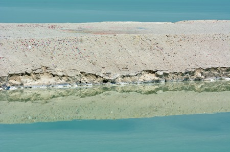 mineral salt: Mineral  salt formation at the Dead Sea Israel Stock Photo
