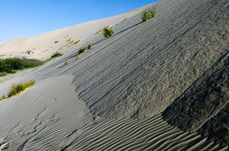 Te: Te Paki sand dunes in Northland New Zealand.