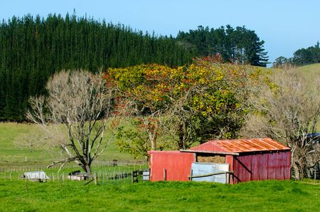 old red barn: An old red barn in Northland New Zealand.