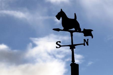 puntos cardinales: Paleta de tiempo en forma de un perro recortada contra un cielo tormentoso. Foto de archivo