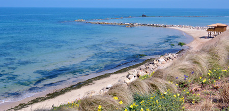 yam israel: Panoramic aerial view of empty Mediterranean Sea beach in Bat Yam, Israel.