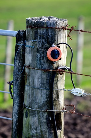 electric fence: Close up of electric fence in rural spring landscape. Stock Photo