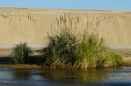 quicksand: Streambed in Te Paki sand dunes in Northland New Zealand. Stock Photo