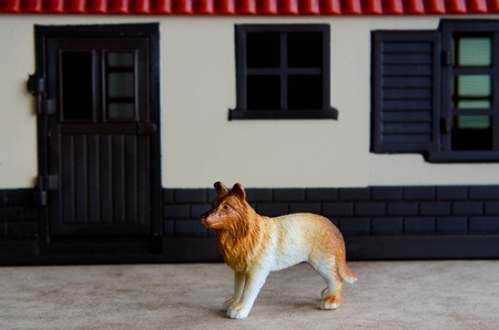 guard house: Concept photo: A toy guard dog guarding a house.