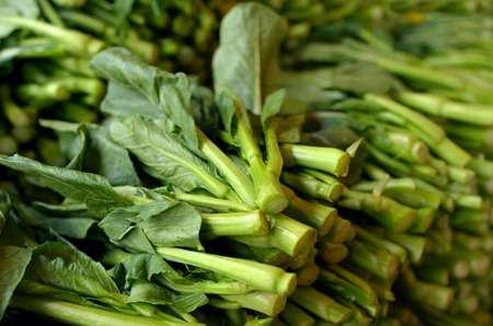 indian mustard: Bunch of Asian fresh mustard greens in Chinatown market. Food background texture.