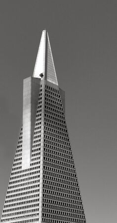 transamerica: SAN FRANCISCO - MAY 16 2015: Transamerica Pyramid in San Francisco CBD. At 853 feet (250 meter) tall the Transamerica Pyramid is the tallest skyscraper in the San Francisco skyline. Editorial