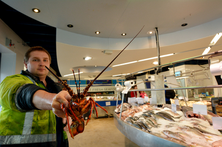 retailers: AUCKLAND - JULY 08 2015:Salesman exhibit lobster in Auckland Fish Market. The Fish Market building, hosts fresh seafood retailers, a boutique food market, restaurants and Auckland Seafood School.