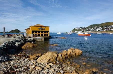 wellington: Fishing boats in Island bay in Wellington, New Zealand.