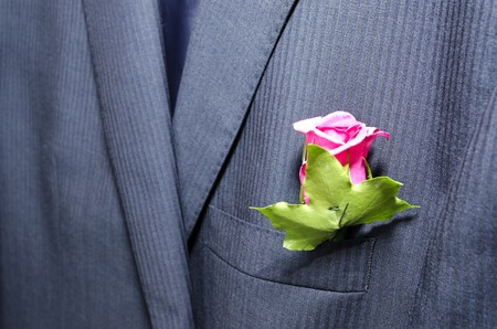 corsage: Pink rose, wedding corsage worn in button hole of morning suit. Narrow depth of field.