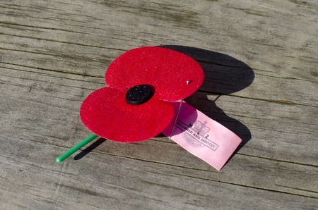during the day: Close up of an ANZAC red poppie on the ground during a National War Memorial Anzac Day services in New Zealand Stock Photo