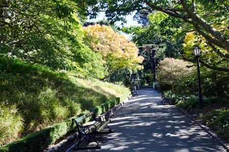 botanic: Wellington Botanic Gardens in Wellington New Zealand.
