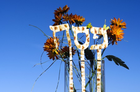 hebrew letters: A vase with orange flowers and the Hebrew letters of the word Pesach mean Passover during the spring holiday in Israel. Copy space