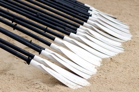 black white kayak: A row of a Canoe and Kayak Paddles