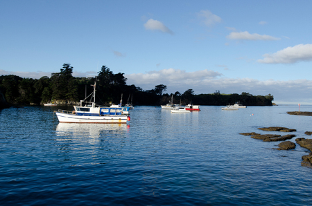 fishingboat: Fishing boats in Leigh harbour, New Zealand