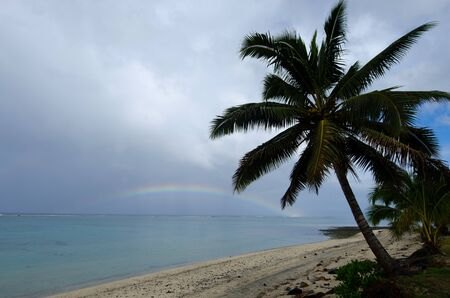 rarotonga: Coconut palm trees and rainbow at Titikaveka beach in Rarotonga Cook Islands.