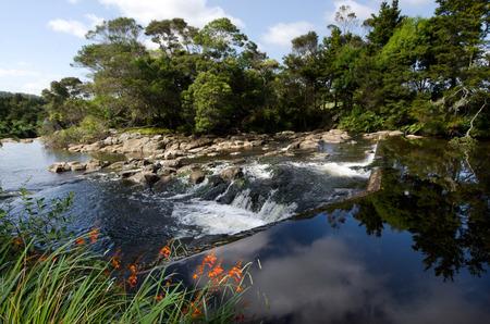 nz: Kerikeri waterfalls nature reseve in Northland New Zealand. (NZ) Stock Photo