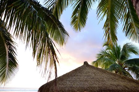 rarotonga: Roof of a small pacific island hut on Titikaveka beach in Rarotonga Cook Islands during sunset.