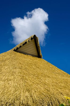 rarotonga: Roof of a small pacific island hut against blu sky  in Rarotonga Cook Islands.