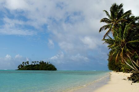 rarotonga: Palm trees on the bech and small coral islet at Muri Lagoon in Rarotonga Cook Islands.