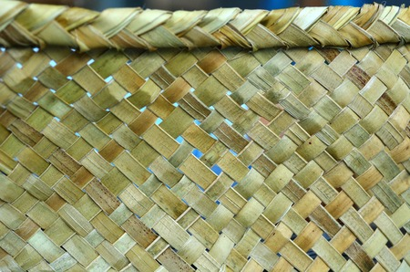 new zealand flax: Maori weaving artwork background texture.