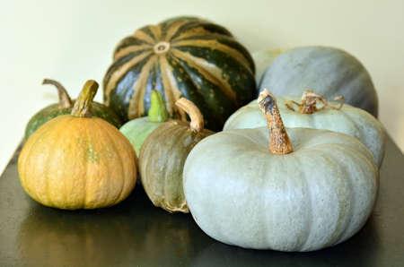 pumpkin soup: Pumpkins selection on farm house kitchen table.