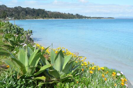 aotearoa: Landscape view of Rangiputa beach in Karikari Peninsula Northland,New Zealand.Its a famous holiday travel destination in NZ.