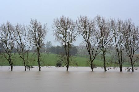 estado del tiempo: Flooded fields in Northland, New Zealand