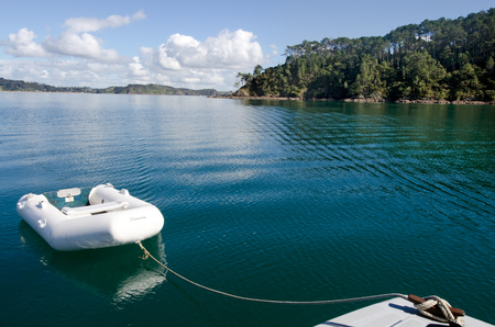 dingy: White dingy boat mooring at Roberton Island in the Bay of Islands, New Zealand.