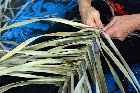 weavers: Hands of an old Maori woman weaving a traditional Maori woven artwork.