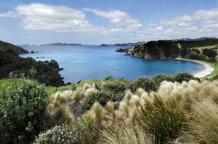 new zealand beach: Landscape of Mahinepua Peninsula in Northland, New Zealand