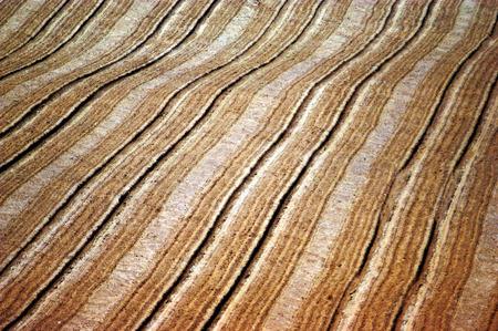 fertile land: Landscape of a Plow field. Stock Photo