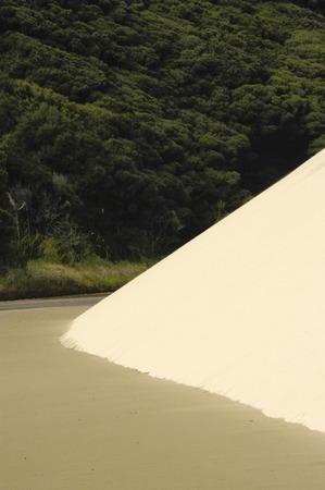 te: Te Paki dunes, North Island, New Zealand.