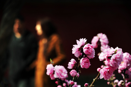 Forbidden City: Chinese couple lovers at the Forbidden City. Stock Photo