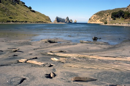 aotearoa: Beach near cape Kidnappers and tolaga bay, New Zealand.