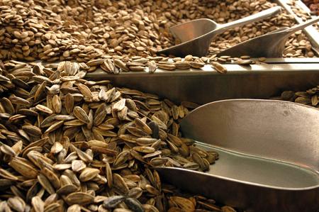 sunflower seeds: Sunflower seeds. Stock Photo