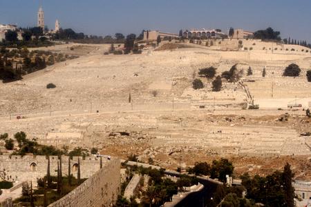 mount of olives: Mount of Olives in Jerusalem, Israel.