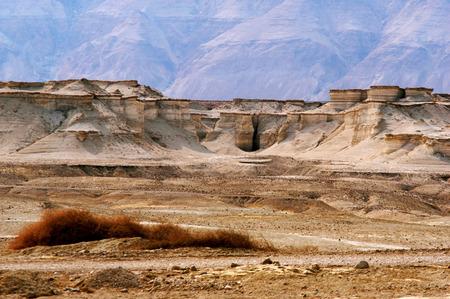 holyland: Landscape of the Judean Desert, Israel.