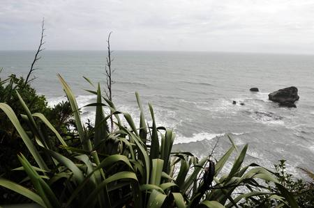 west  coast: A view of a rough west coast beach in southern New Zealand.