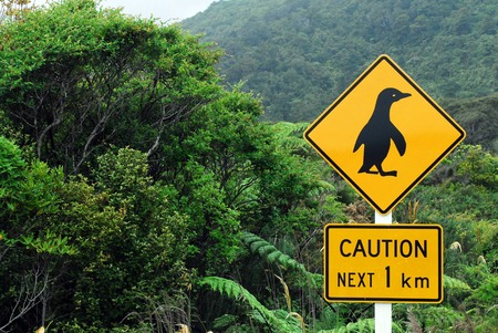 west  coast: Caution Penguins road sign next 1 km and native bust on southern West Coast of New Zealand. Stock Photo