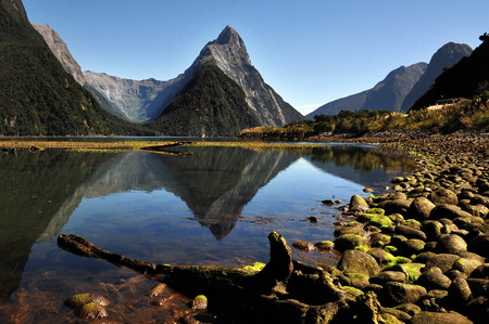 south island new zealand: Mitre Peak in Fiordland National Park, South Island, New Zealand.