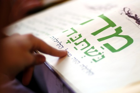 the feast of the passover: A woman reads the Haggadah (traditional text) during blessings for the Jewish holiday of Passover Dinner