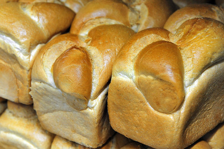 challah: Shabbat bread rolls ,Challah, on display in a bakery shop.