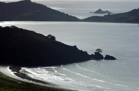 aotearoa: Beach in Northland, New Zealand. Stock Photo