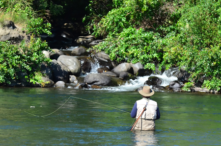 A fisherman fly fishes for Trout fish in Tongariro river near Taupo lake, New Zealand. 免版税图像