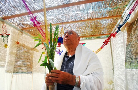 succos: A Jewish man bless on the four species in the Sukkah in Sukkoth jewish holiday.