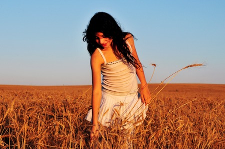 israel farming: Israeli girl collects wheat from the field for Shavuot Jewsih Holiday. Stock Photo