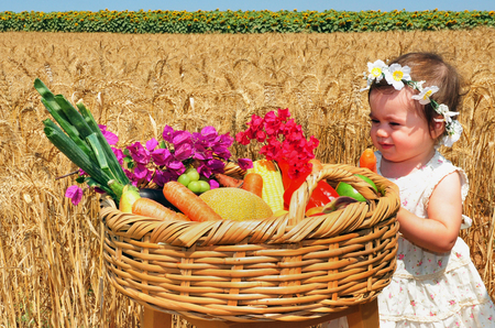 shavuot: Little girl with basket of the first fruits during the Jewish holiday, Shavuot in Israel.