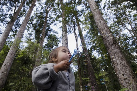 blows: A toddler blows bubbles in a forest during a holiday.